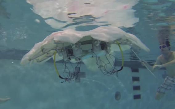Virginia_Tech_Life-like,_autonomous_robotic_jellyfish_-_YouTube_-_2015-07-16_01.41.11